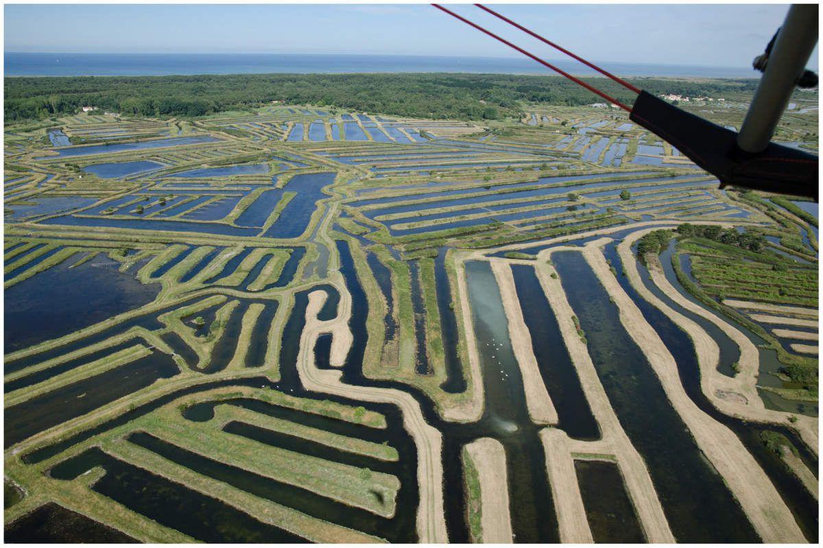 Vendée vue d'en haut, au pays des Olonnes.