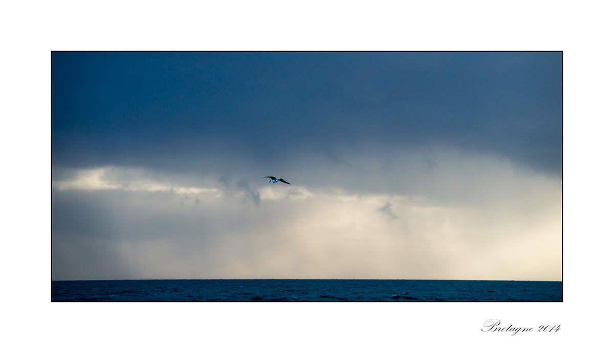 Ambiance du Morbihan
