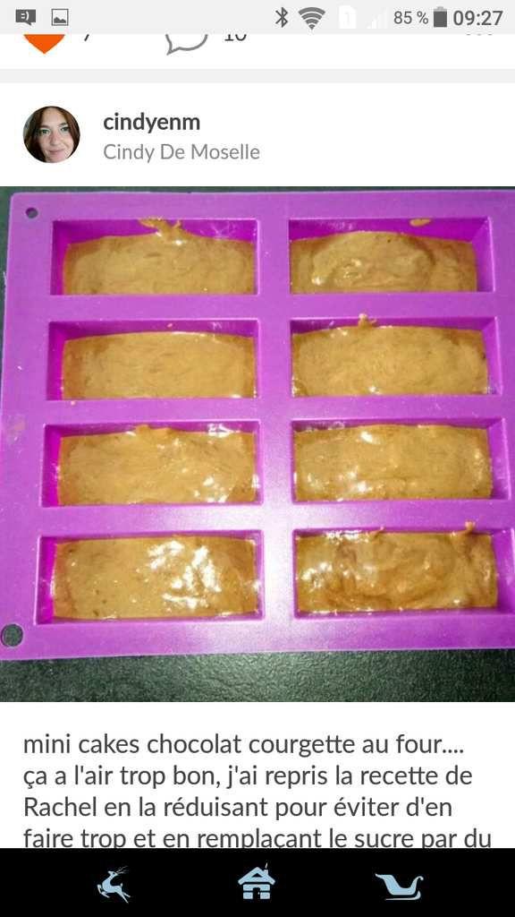 Mini cake chocolat courgette 2sp