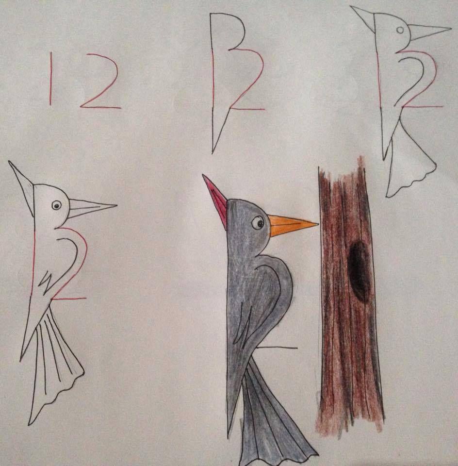 Une poule à partir du 10, un pivert marteau piqueur à partir du 12