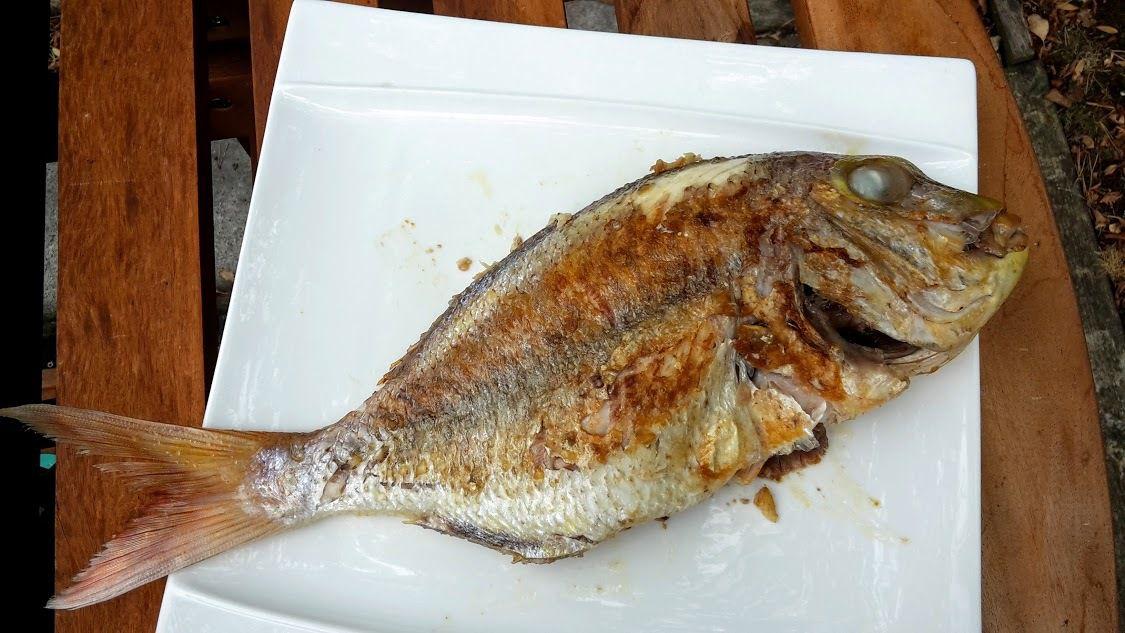 Pagre, ou casse burgot, ou gueule pavée ou grand pageot, sauvage et pêchée (crue et grillée)