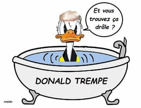 Donald trempe les USA