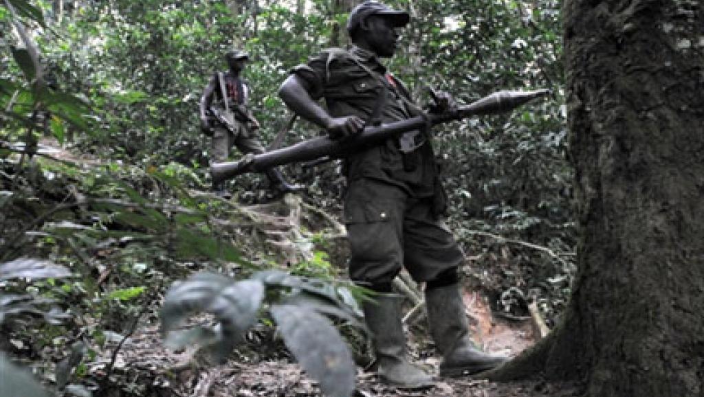 RDC : reddition des FDLR, trois mois après, aucun progrès