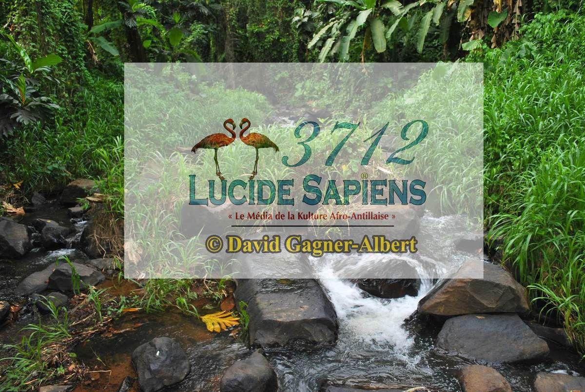 Une diablesse dans la rivière du quartier Tracée Trinité en Martinique