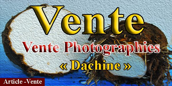 Photographies du dachine de la Martinique