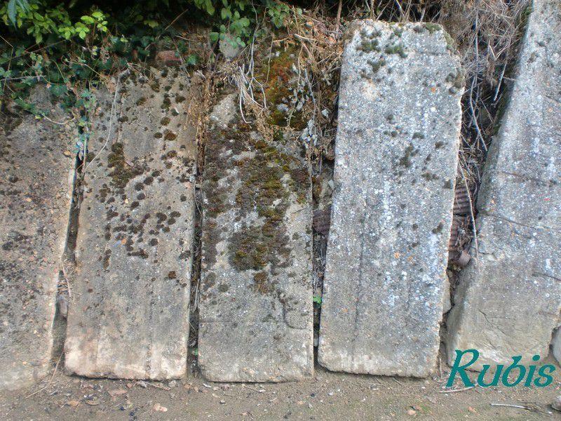 Sarcophages de la Sarthe (72)