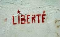 http://www.ndweb.org/2015/11/reggiani_ma_liberte/mage