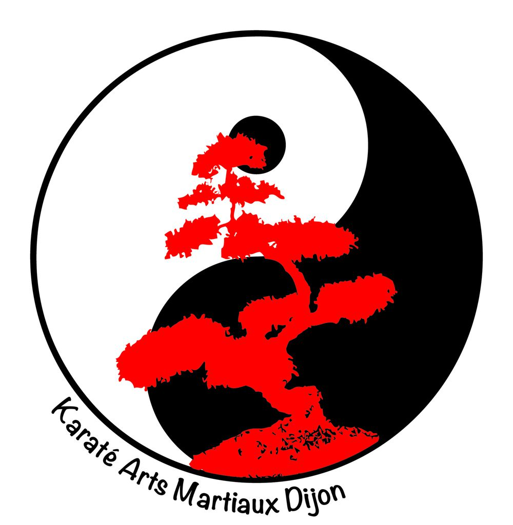 Les 26 katas du shotokan ry karat arts martiaux dijon for Art martiaux