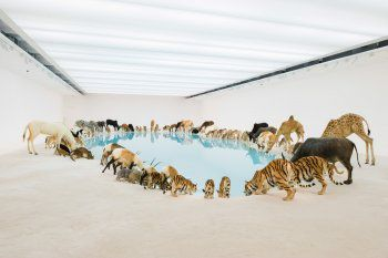 Cai Guo-Qiang, Falling Back to Earth, 2013-  Qatar Museums Authority Contact: Omar Chaikhouni