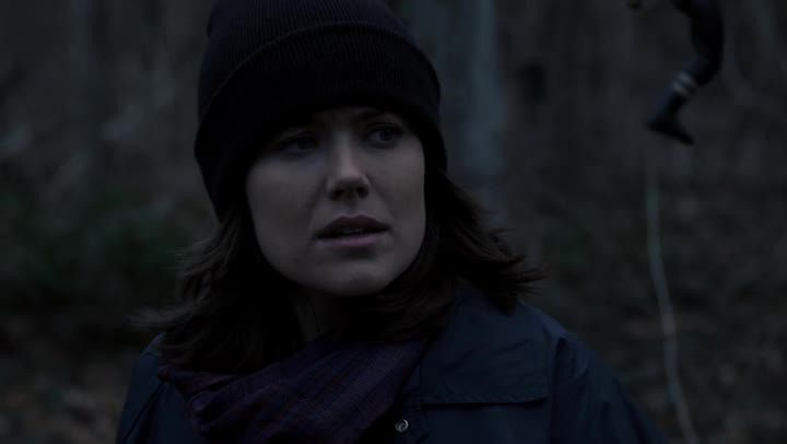 Critiques Séries : The Blacklist. Saison 2. Episode 12. The Kenyon Family.