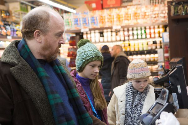 Critiques Séries : Louie. Saison 5. Episode 2. A la Carte.