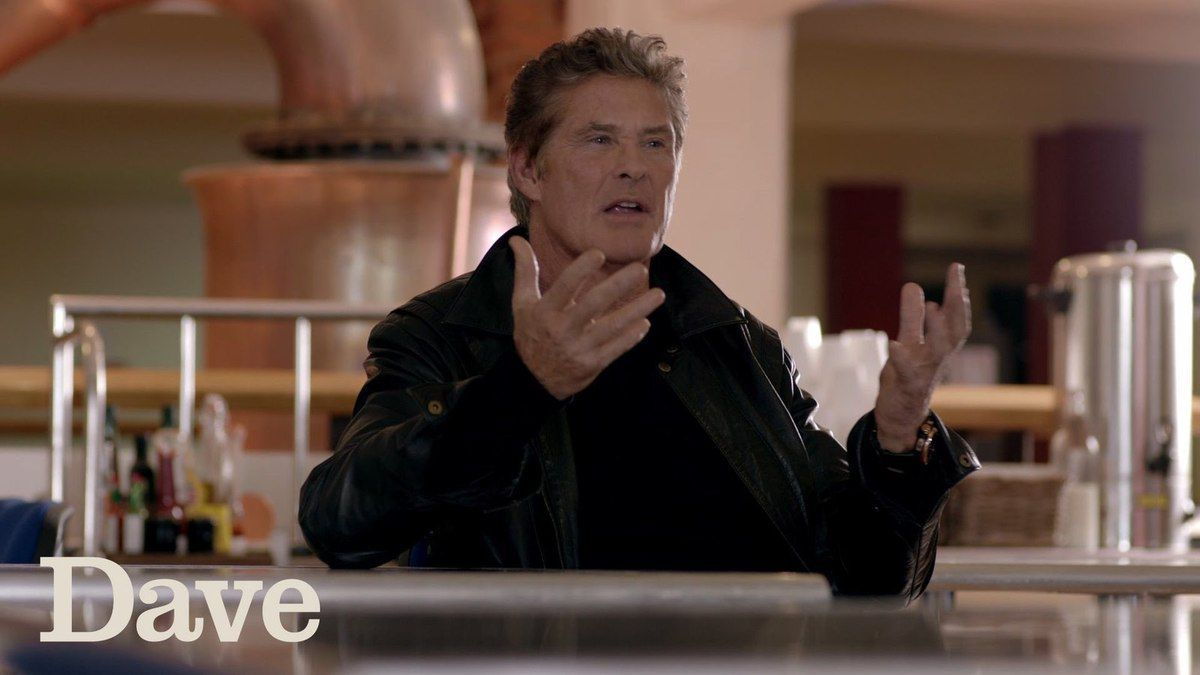 Critiques Séries : Hoff the Record. Saison 1. Pilot (UK).