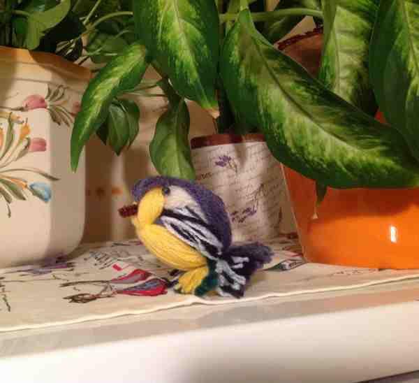 L'oiseau de Frédérique
