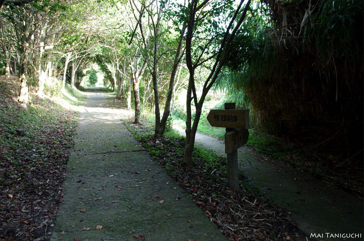 L'île forteresse Oshima