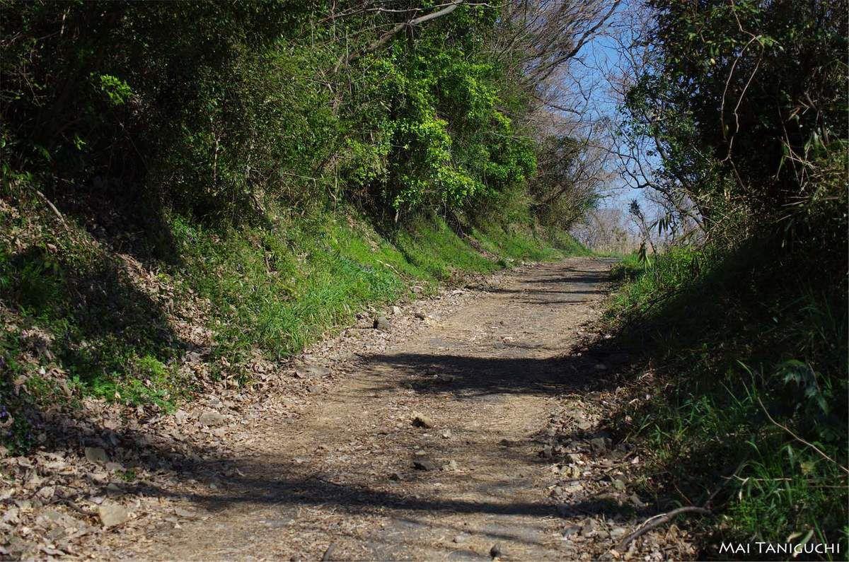 Promenade sur l'île de Megi