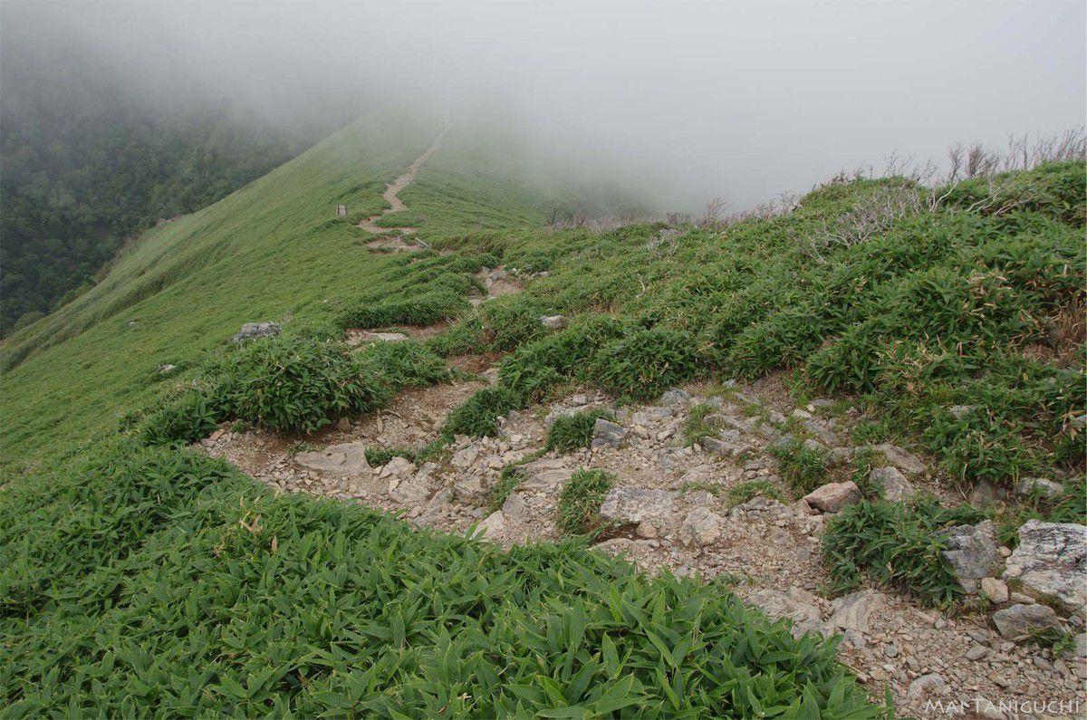 L'escapade à la montagne 2