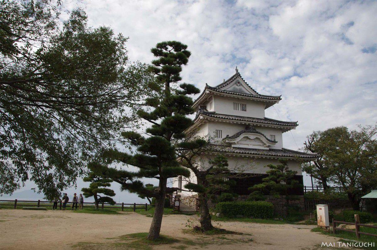 Le château de Marugame