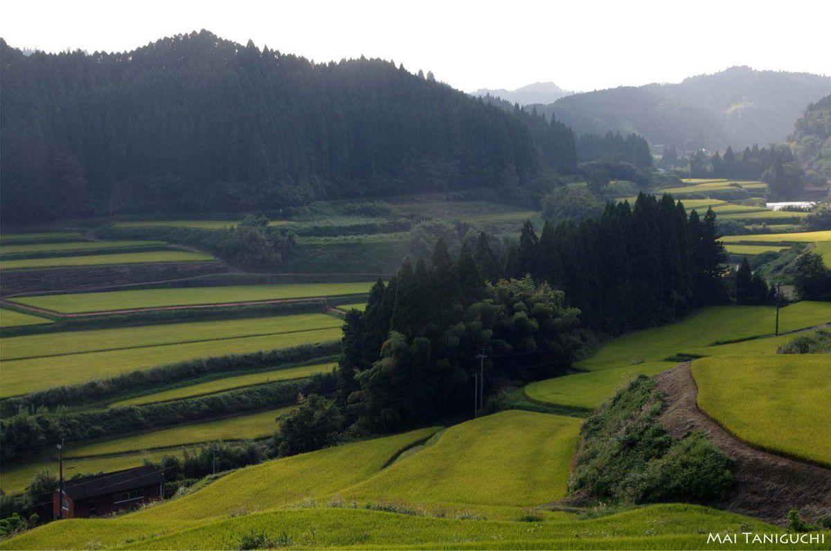 Randonnée dans les montagnes Kuju-Aso 2