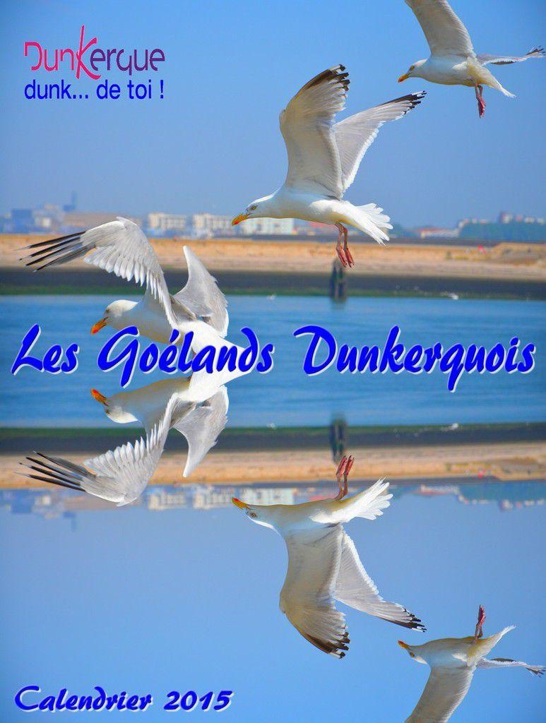 """Les Goélands Dunkerquois"" Calendrier 2015 ."