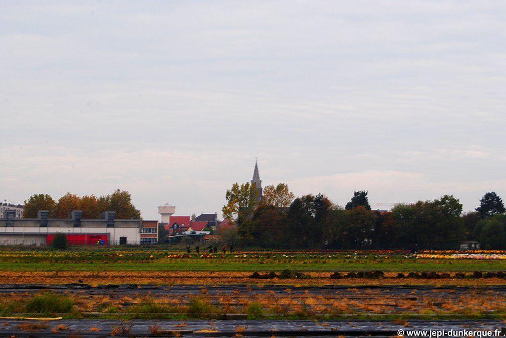 Balade automnale - Dunkerque/Rosendaël 2015