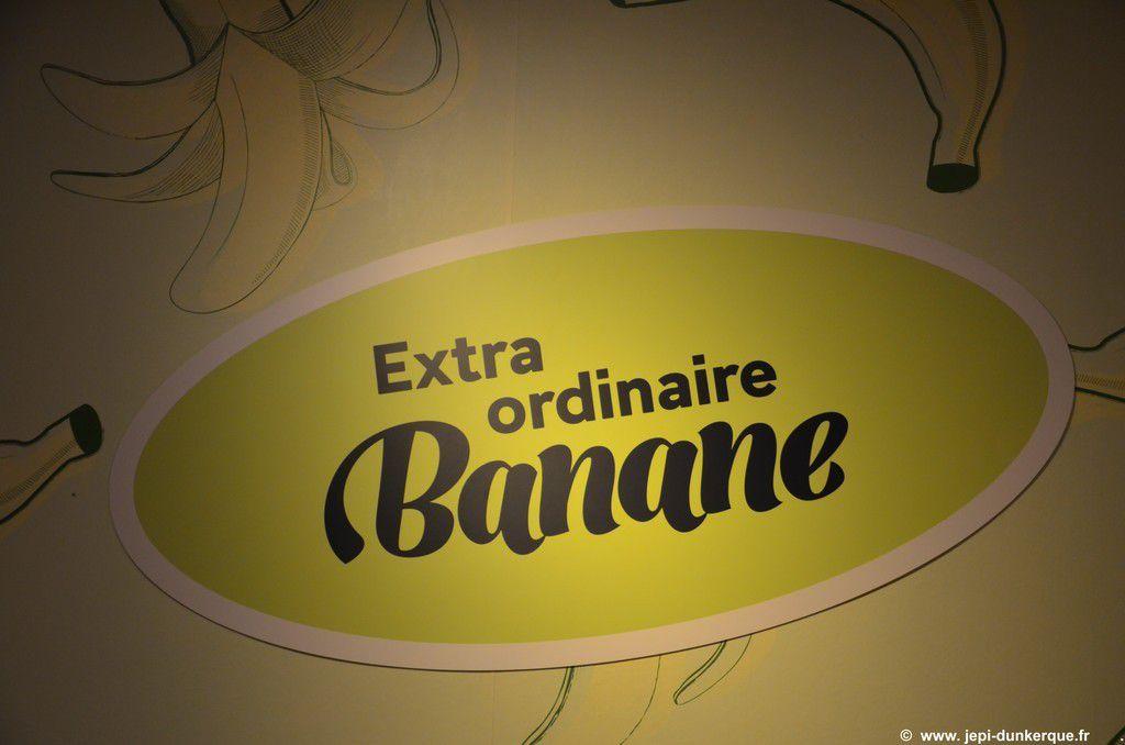 Exposition La Banane Musée Portuaire - Dunkerque 2016