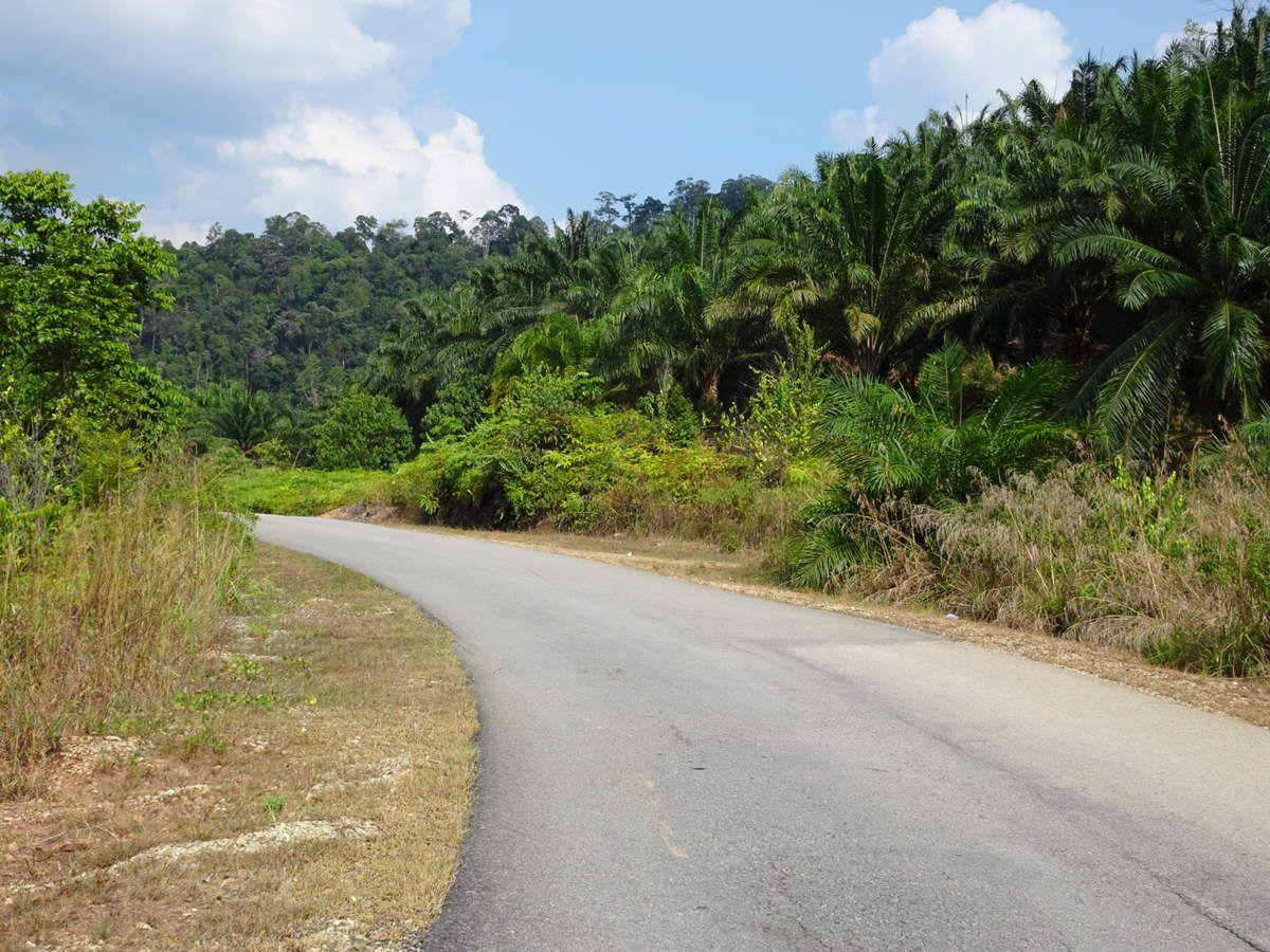 Semaine 53 (Malaisie)