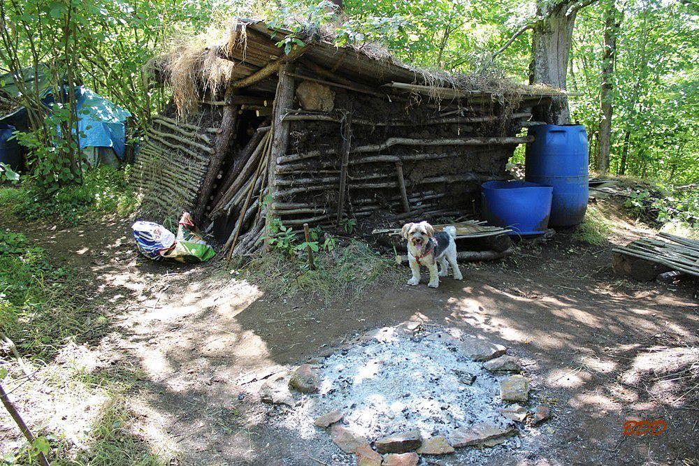Algrange cabanes dans les bois Le blog de Denis Algrange # Cabanes Dans Les Bois