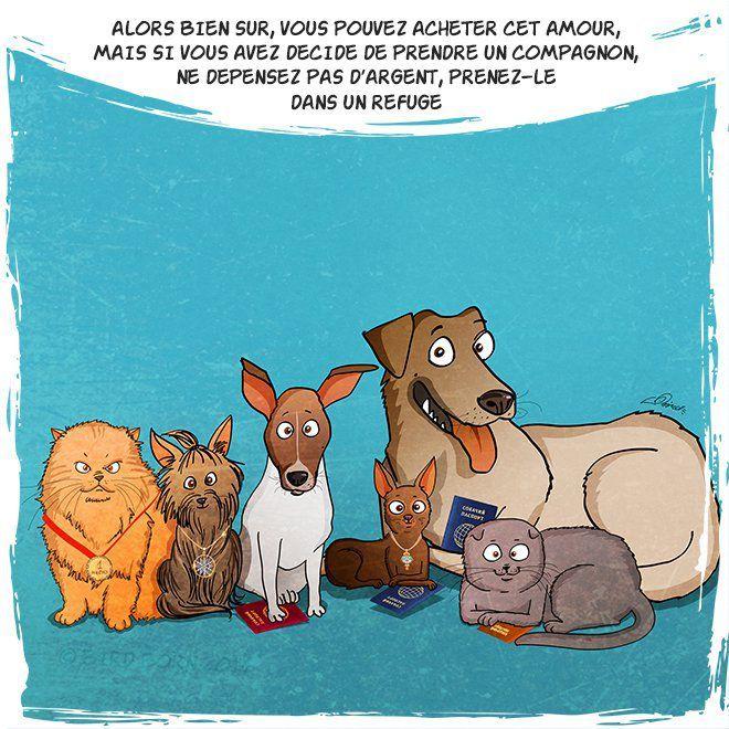 Adoptez un chien