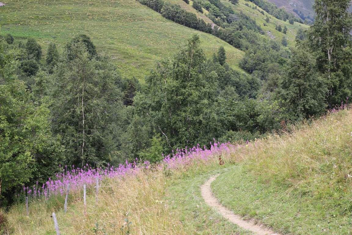 Col d'Ornon balade
