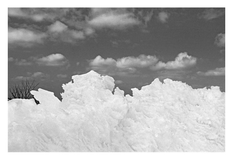 Mont Aigoual, 03/2016.