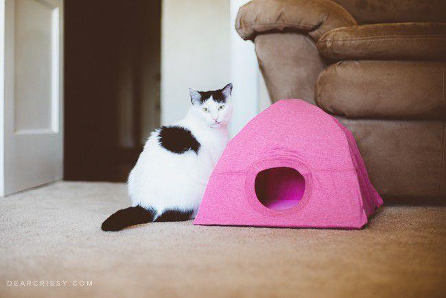 DIY une cabane à chat