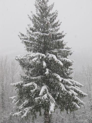 Le ciel de décembre