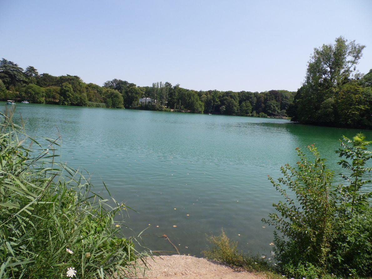 La France - Lyon - le parc de la tête d'or