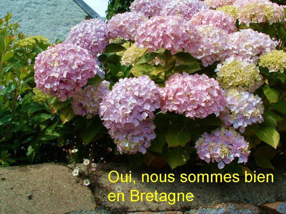 La France - L'Ile de Bréhat