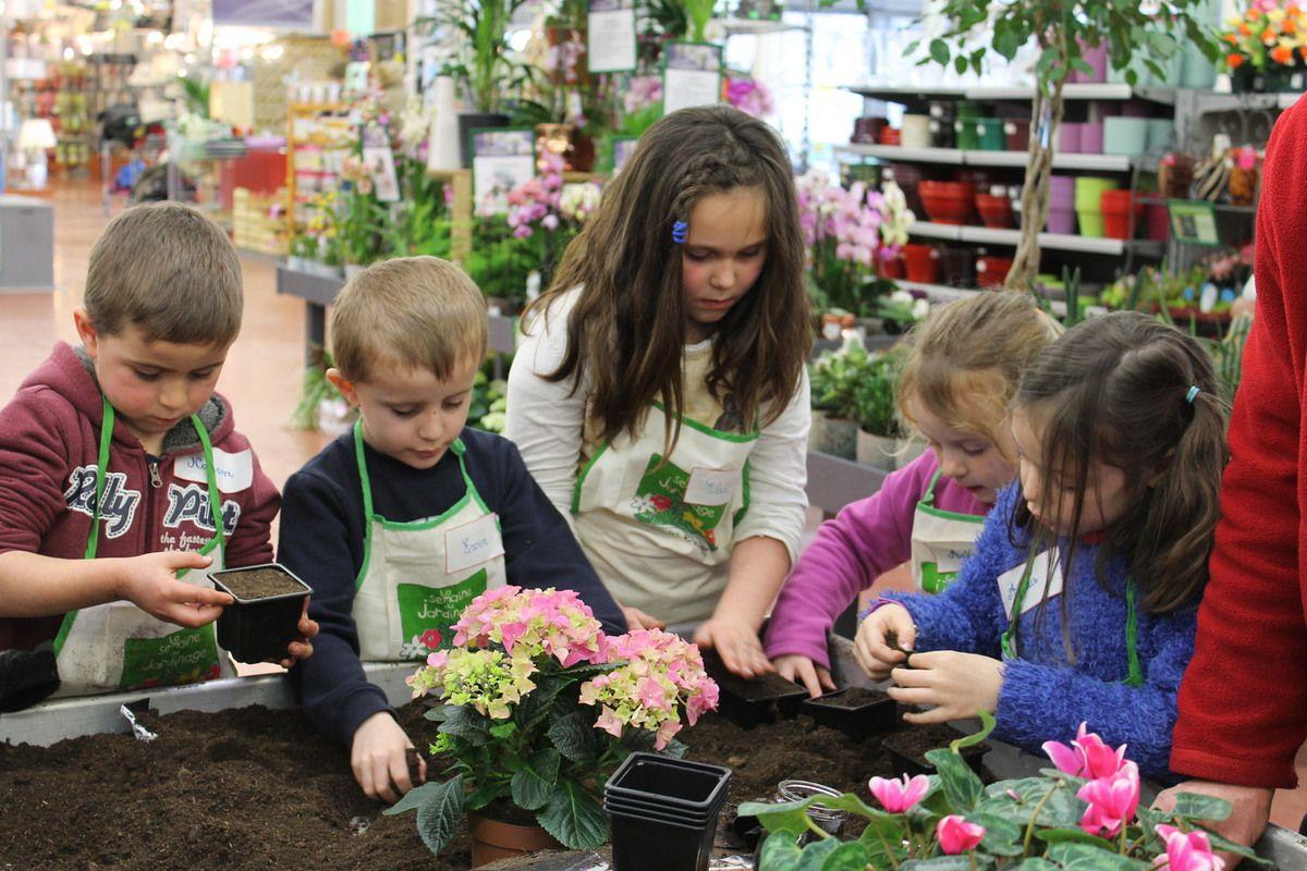 Ateliers  jardinage à Bréal