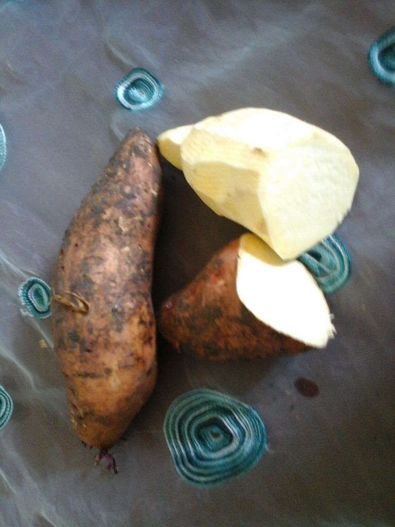 La patate douce dominicaine, chair blanche