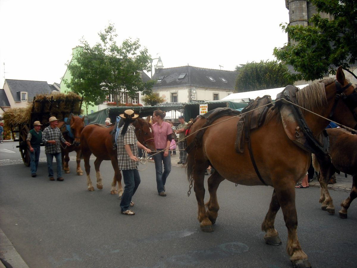 les fêtes des 14 et 15 août à Bannalec - le défilé et les chants