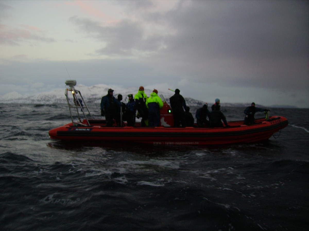 Mit Zodiaks ging es hinaus. Die Trocken-Tauchanzüge aus dickem Neopren machten die Fahrt nicht wirklich kuschelig-gemütlich, gerade an den Fingern und Füße war es einfach saukalt. Aber das Adrenalin hat das Kältegefühl besiegt, als wir durch dicke Wellen gejagt sind und die Orcas gesehen haben.