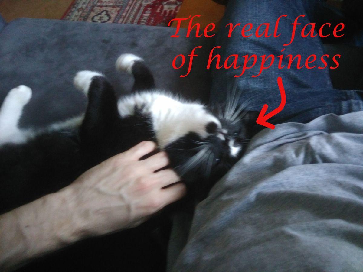 Oui, le bonheur c'est flou.