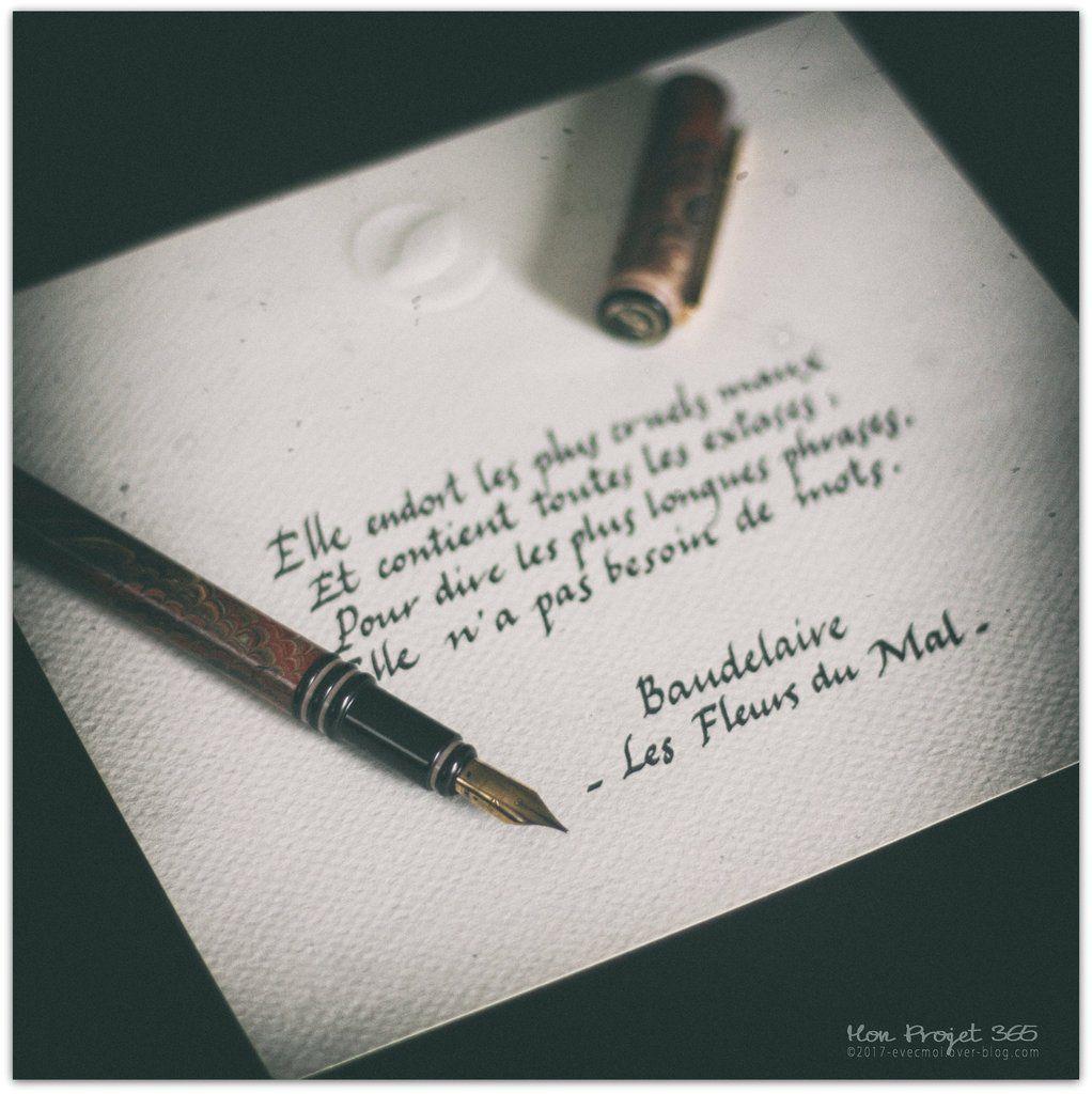 #MonProjet365 - Jour 188 - L'Ecriture...