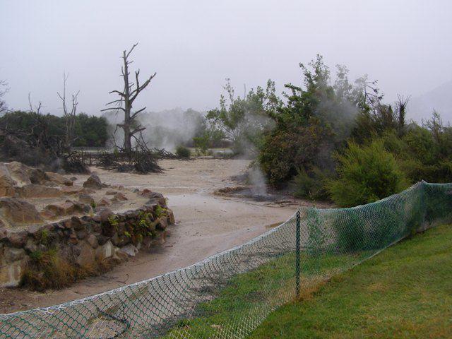 Souvenirs de Nouvelle Zélande, boues et fumerolles