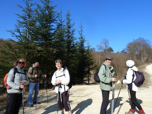 GREB - Forêt de Marsanne, trop tôt pour les jonquilles !