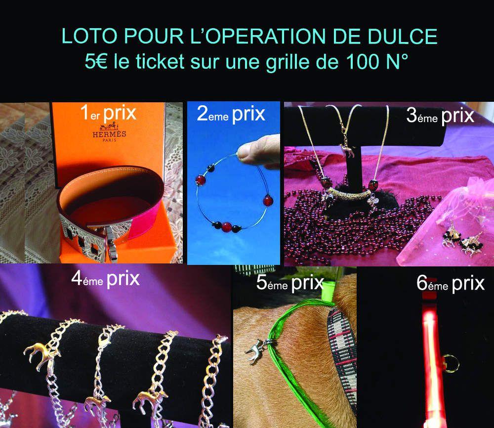Loto organisé pour l'opération de la podenca Dulce