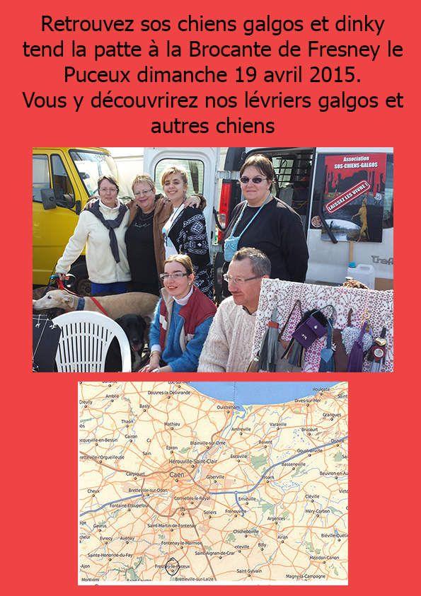 Stand Brocante dimanche 19 avril à fresney le puceux Normandie pres de Caen en faveur des lévriers d'Espagne