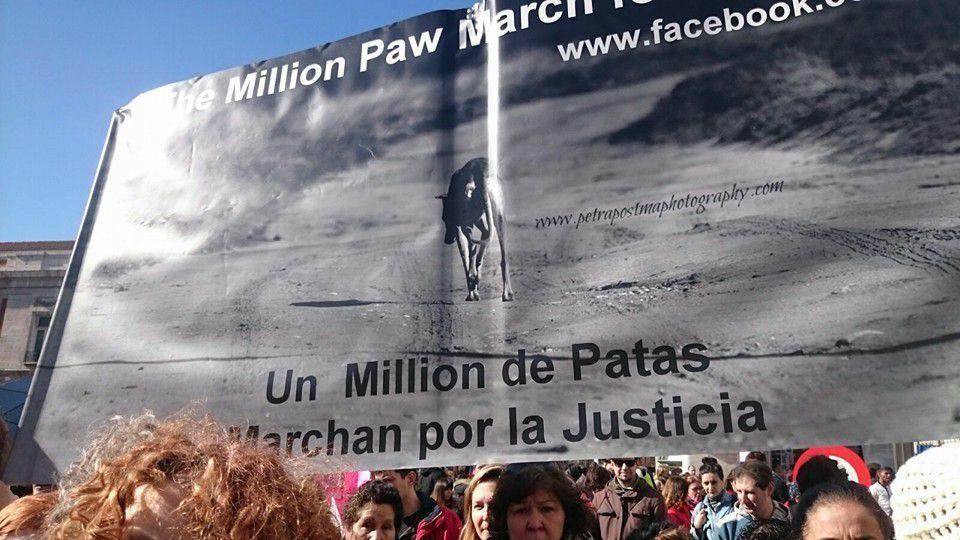 manifestation pour les lévriers galgos Madrid, Barcelone
