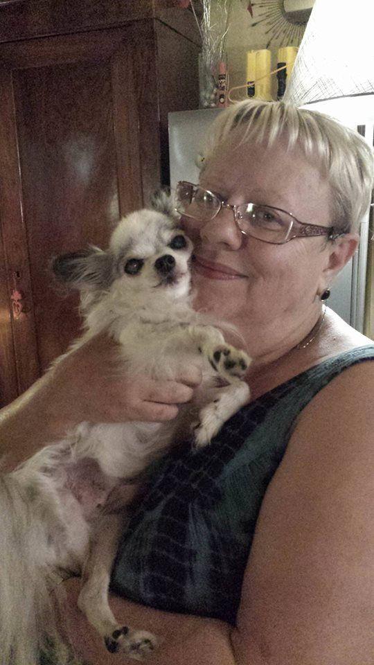 Notre petit chihuahua &quot&#x3B;Roméo&quot&#x3B; de 17ans que nous avons gardé chez nous avec sa petite chérie va mal