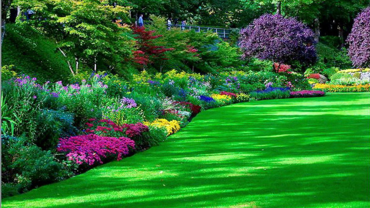 Beautiful flower garden for Beautiful flowers to plant in your garden