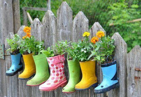image du web http://bichau.canalblog.com/archives/2012/03/16/23773226.html