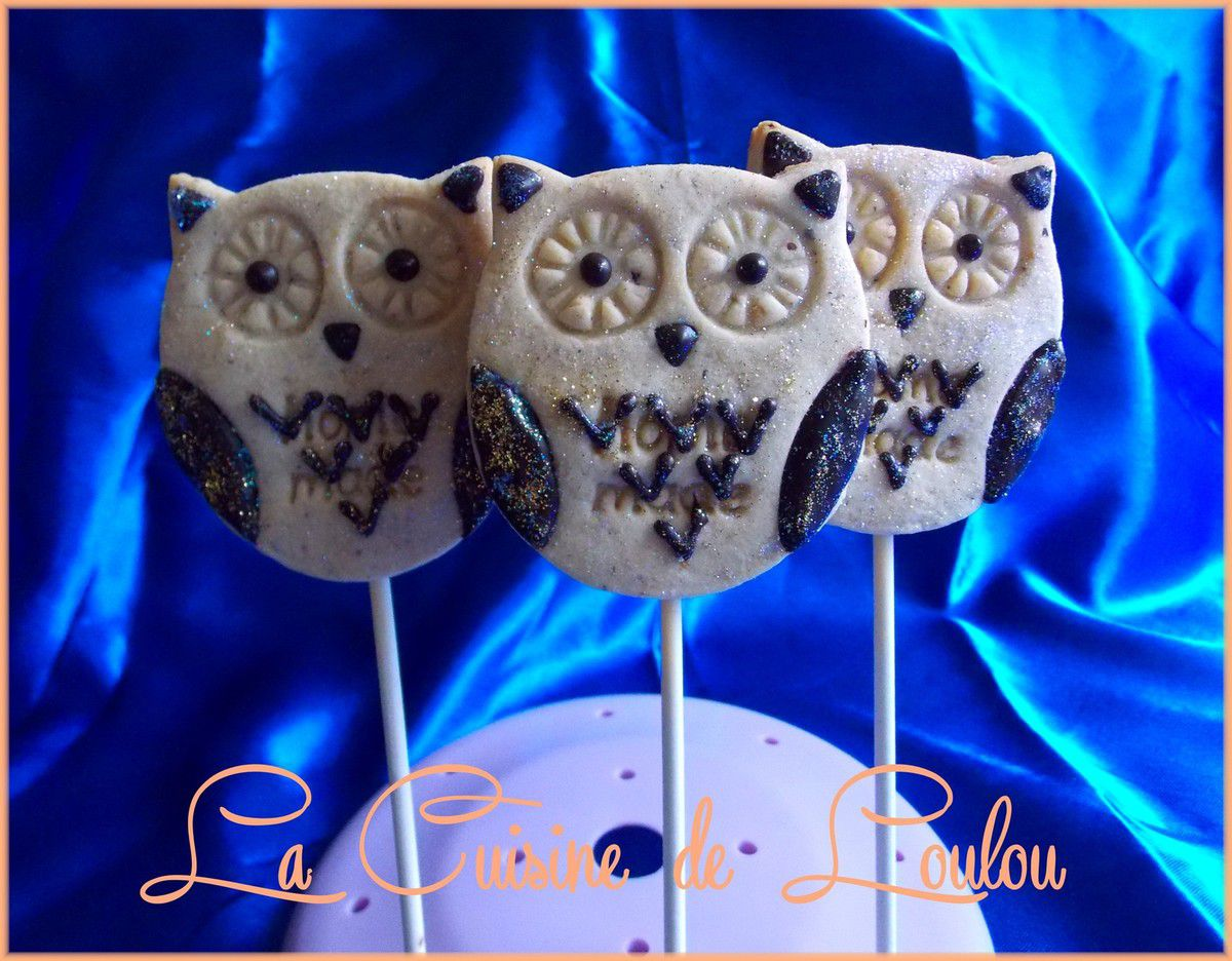 Cookie pops hibou ou chouette ouh!ouh!ouh!