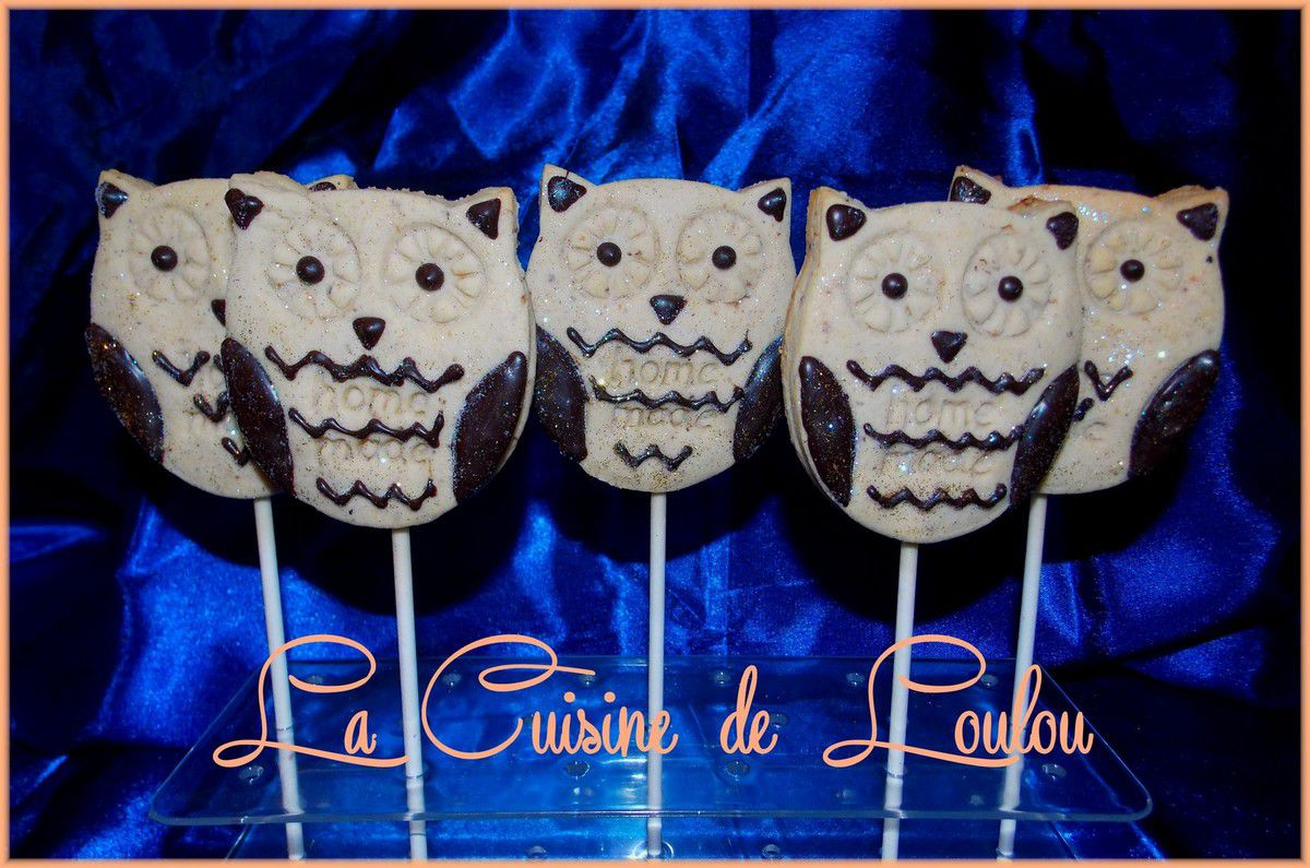 Cookie pops hibou ou chouette ouh!ouh!ouh&